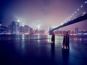 城市夜景跨海大桥夜景高楼建筑都市图片素材 模板下载 1.22MB 其他大全 标志丨符号