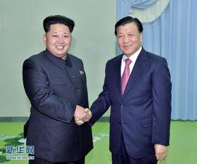 刘云山会见朝鲜劳动党第一书记金正恩(摄)