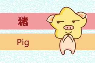 属猪农历十一月运程如何
