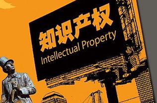 知识产权建设的目的