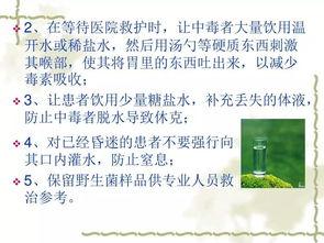 开展野生菌中毒知识活动的总结