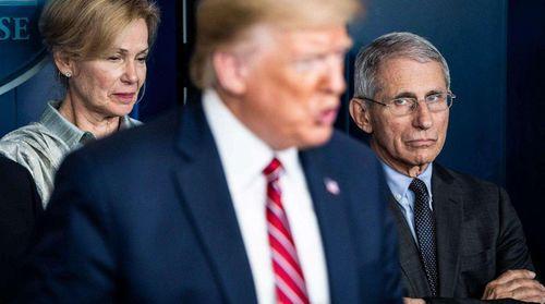 与白宫划清界限美国传染病专家福奇回归,或不再与特朗普为伍