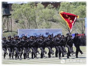 今年5月19日,是哈尔滨市公安局巡(特)警支队特警一大队被公安部授予全国优秀公安基层单位荣誉称号一周年.