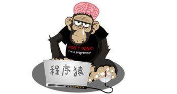 程序猿工资高又不炫富 网爵电商