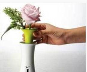 护肤瓶可以养花吗