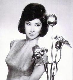 还珠 香妃 刘丹遇车祸 英年早逝明星死因内幕 18