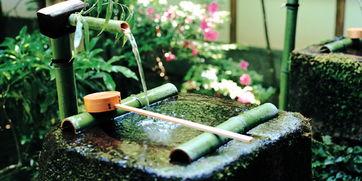 日本九州4晚5日 赏自然美景 亲近自然 远离城市喧嚣 洗肺清新之旅
