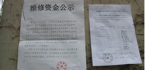 学校房屋粉刷维修申请报告范文
