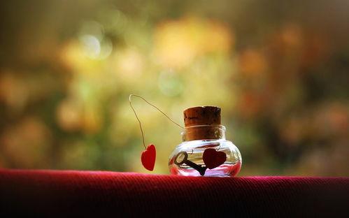 唯美的瓶子爱情ppt背景图片