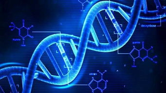 dna研究发现古人类基因中存在异常基因,网友或被外星人改造过