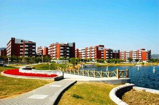 广州大学和山东科技大学哪个好