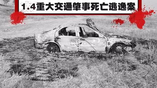 交通肇事逃逸可以私了交通肇事致人死亡逃逸中驾车车毁人亡保险怎么陪付
