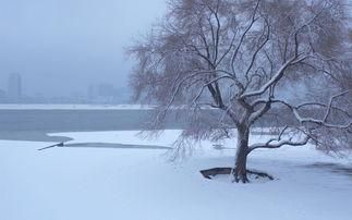 关于冬日的唯美诗句