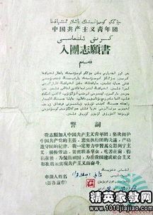 华润青工作委员会申请范文