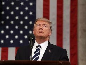 美国总统特朗普(网络图片)