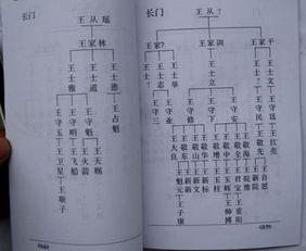 族谱中谱名指的是什么?