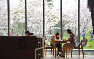 晓书馆分为两层楼,一楼有经济、国学、语言学、电影音乐戏剧、医疗膳食生活、中国历史、传记、建筑设计工艺美术、世界文学、世界历史、艺术绘画、中国文学、社会科学、政治、法律、科学等类别的书籍,二楼主要是儿童书目及外文原著.
