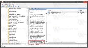 Windows10专业版下那些让用户无法享受的功能
