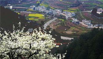 贵州桐梓县小水风水