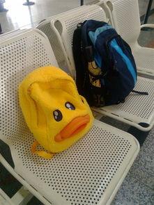 小鸭去旅行教材