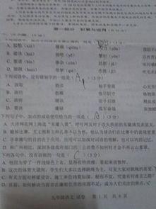 九上语文生字词拼音小卷