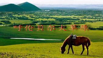 描写草原广的四字词