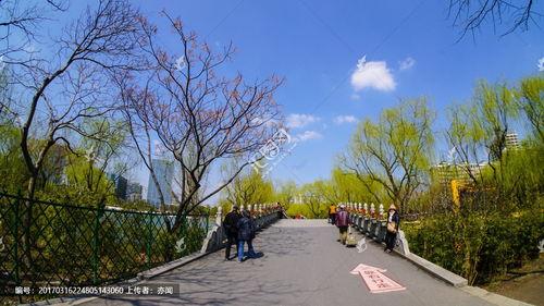 描写春天公园里的景色400_描写春天公园景色的作文400字