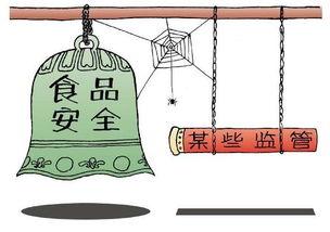 在中国的食品安全问题有哪些方面