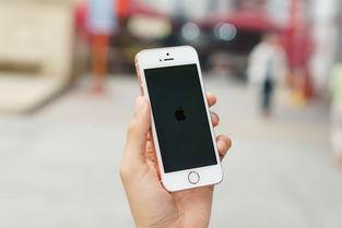 苹果进军中低端市场低价iphoneiphonese2,库克称需求强劲