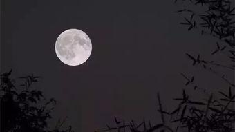 有关赞美月亮的古诗词