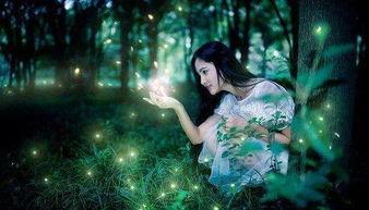 公益活动 7.18 杭州小众旅行推荐丨城市里浪漫的萤火虫森林