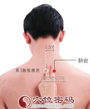 肺在哪个位置图(人体肺部的位置图)