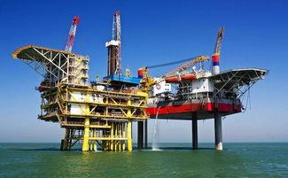 石油主干专业有哪些