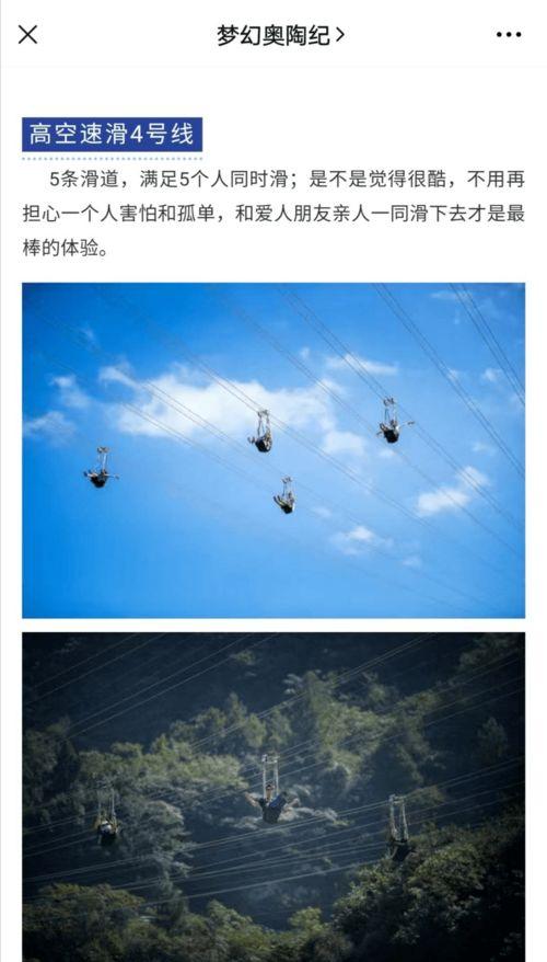 视频惊险又一网红景点突发事故,女子高空索道直线坠落身亡