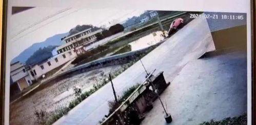 四川宜宾一轿车离奇失控滑进水塘车内一家七口,四人遇难