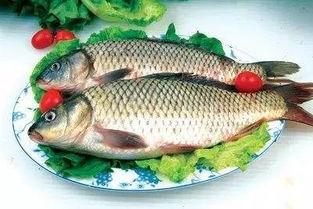 吃鲤鱼的禁忌(鲤鱼为什么不能吃)