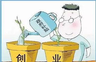 创业贷款政策(农村20万无息贷款)
