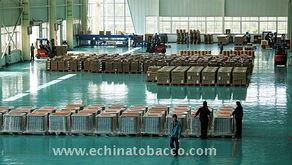 中国烟草资讯网(烟草市场分析)