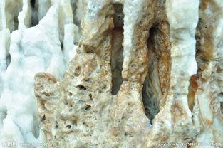 神奇的石头图片