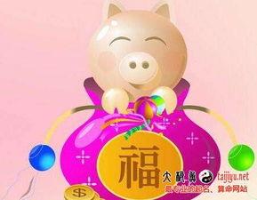 2019猪宝宝起名免费