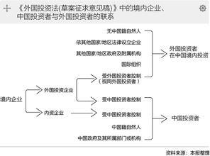 外国投资法vie游云庭