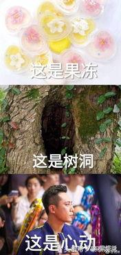 刘烨感谢粉丝制作表情包互动网友聊土味情话新闻蛋蛋赞