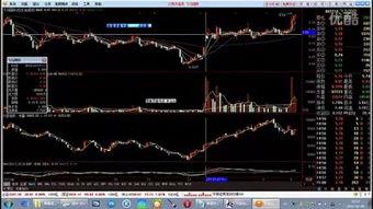 股票t+0交易平台在哪里有