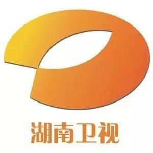 湖南卫视2009年的市值是多少?