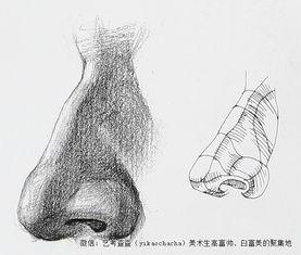 人物素描侧面鼻子的画法