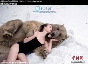 棕熊猎杀老虎视频 美女与野兽 俄嫩模合影棕熊呼吁减少猎杀 老虎被棕熊猎杀记录 雄狮猎杀棕熊 不浮躁