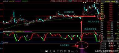 中广核集团股票A股代码是多少?