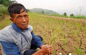 重庆市旱灾导致750余万人出现饮水困难