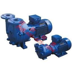 2bv水环式真空泵 喷射式真空泵 总体结构情况分析