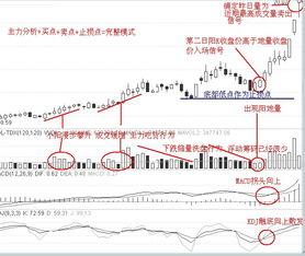 股票中的封盘量怎样解释?